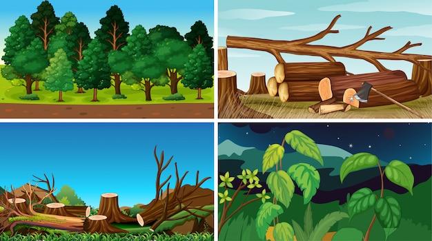 Zestaw środowisk przyrody