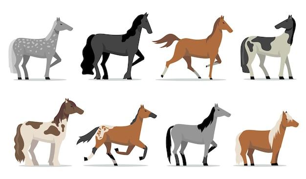 Zestaw stadniny koni. kolorowe ogiery wyścigowe rasy stojącej i biegającej. pojedyncze ilustracje wektorowe płaskie do hodowli, hodowli koni, biznesu, zwierząt domowych