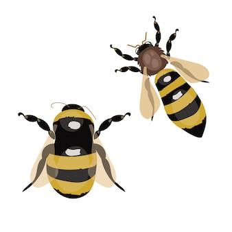 Zestaw stylizowanych pszczół. zbiór logo z pszczołą miodną. ikony z owadami.