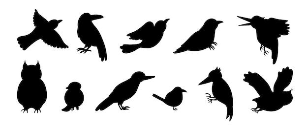 Zestaw stylu cartoon ręcznie rysowane płaskie ptaki leśne