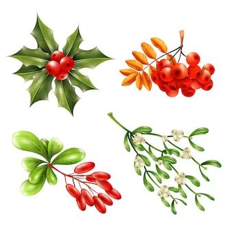 Zestaw świątecznych gałązek jagodowych