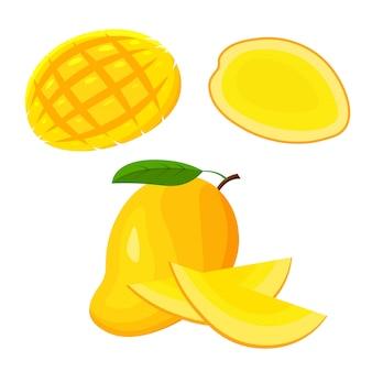 Zestaw świeżych całość, pół, pokrojony plasterek i kawałek owoców mango na białym tle. wegańskie ikony żywności w modnym stylu kreskówek. koncepcja zdrowego egzotycznego jedzenia tropikalnego.