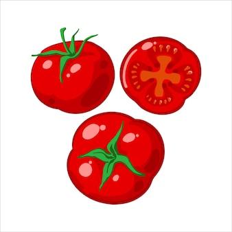 Zestaw świeżych dojrzałych czerwonych pomidorów, plasterek pomidora. ilustracja wektorowa na białym tle.