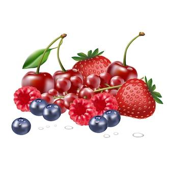 Zestaw świeżych jagód