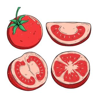 Zestaw świeżych plasterków pomidora z kolorowym rysowaniem dłoni lub stylem szkicu