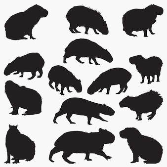 Zestaw sylwetek kapibary