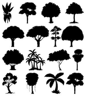 Zestaw sylwetka roślin i drzew