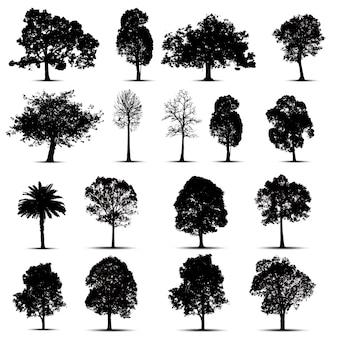 Zestaw sylwetki drzew