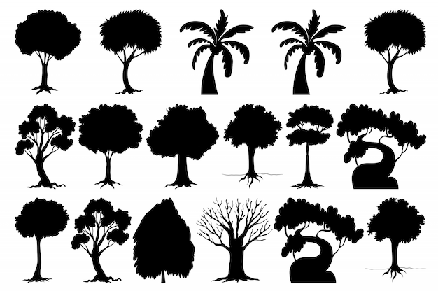 Zestaw sylwetki drzewa