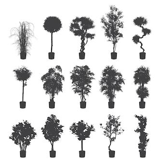 Zestaw sylwetki roślin domowych i biurowych