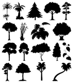 Zestaw sylwetki roślin i drzew