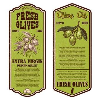 Zestaw szablonów ulotki rocznika oliwy z oliwek.