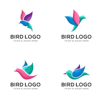 Zestaw szablonu logo kolorowy ptak