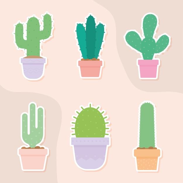 Zestaw sześciu ikon kaktusów nad projektem ilustracji kolor łososia