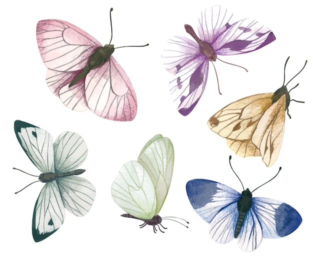 Zestaw sześciu ręcznie rysowane pastelowe motyle