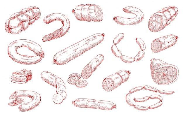 Zestaw szkiców kiełbasy i produkty mięsne