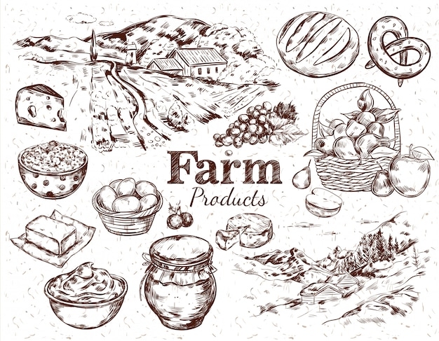 Zestaw szkiców produktów rolnych