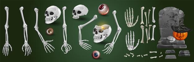 Zestaw szkieletowych rąk wyrastających spod ziemi i rozdartych na strzępy. realistyczny rysunek na białym tle. ilustracja wektorowa eps10