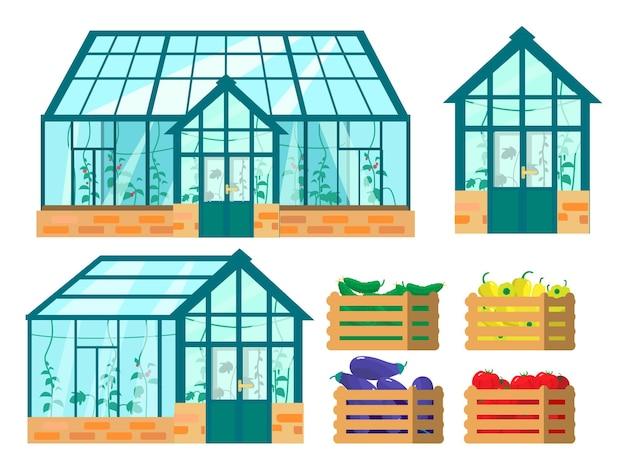 Zestaw szklarni i drewnianych skrzynek z uprawianymi tam warzywami. papryka, pomidory, ogórki, bakłażany.
