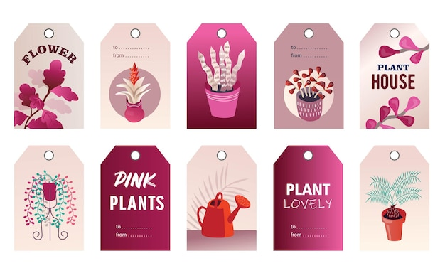 Zestaw tagów roślin domowych