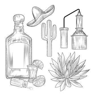 Zestaw tequili. kieliszek i butelka tequili, sól, limonka, niebieska agawa, kostka miedzi, sombrero, kaktus.