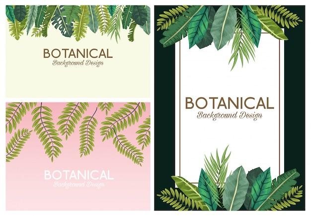 Zestaw tła botanicznego