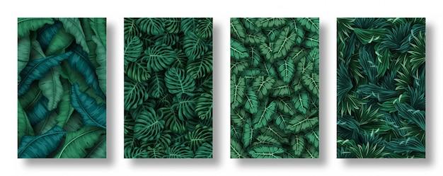 Zestaw tło liści tropikalnych