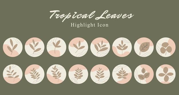 Zestaw tropikalnych liści botanicznych ikon mediów społecznościowych podkreśla szablon historii w kolorze różowej brzoskwini
