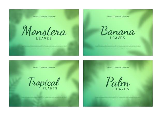 Zestaw tropikalnych liści cień nakładki tła ilustracji wektorowych