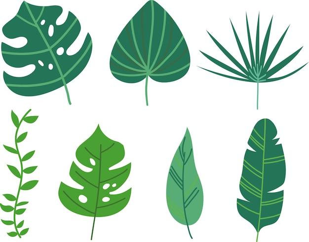 Zestaw tropikalnych liści ręcznie rysowane w płaskie wektor zbiory. styl kreskówki.