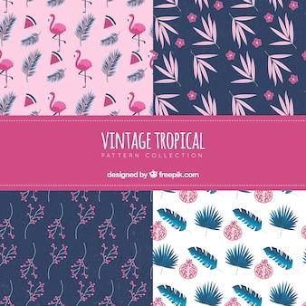 Zestaw tropikalnych wzorów w stylu vintage
