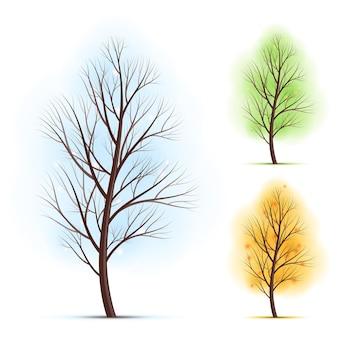 Zestaw trzech drzew