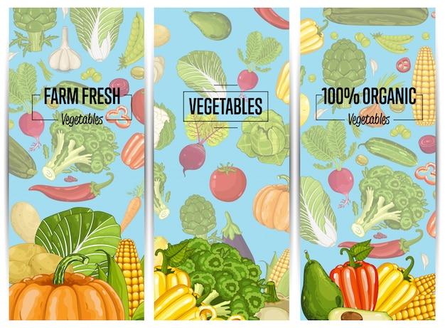 Zestaw ulotki ekologicznej uprawy warzyw