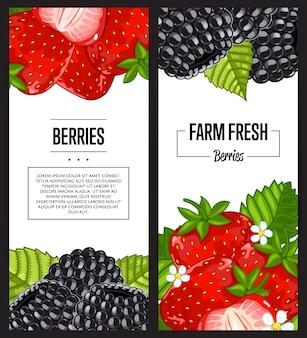 Zestaw ulotki świeże jagody gospodarstwo ekologiczne