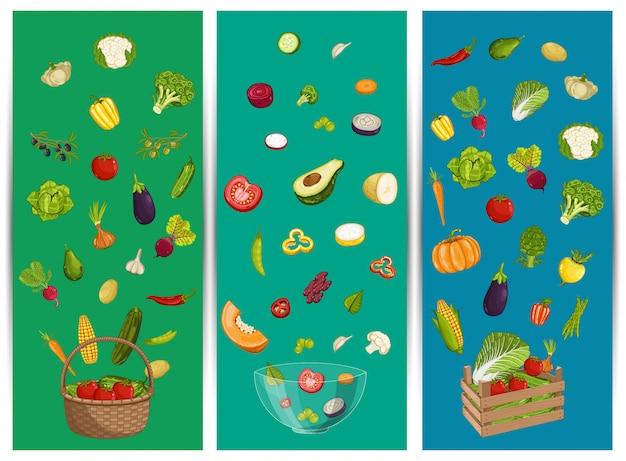Zestaw ulotki żywności ekologicznej z warzywami