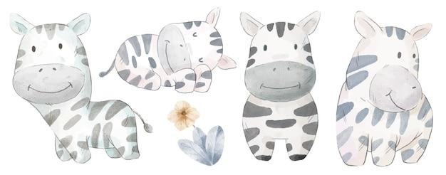 Zestaw uroczej zebry. różne gesty i kolor zebry