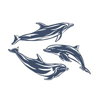 Zestaw uroczych delfinów