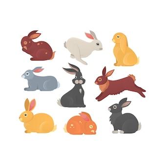 Zestaw uroczych królików w kreskówce. sylwetka zwierzęcia królika w różnych pozach. kolekcja kolorowych zwierząt zająca i królika.