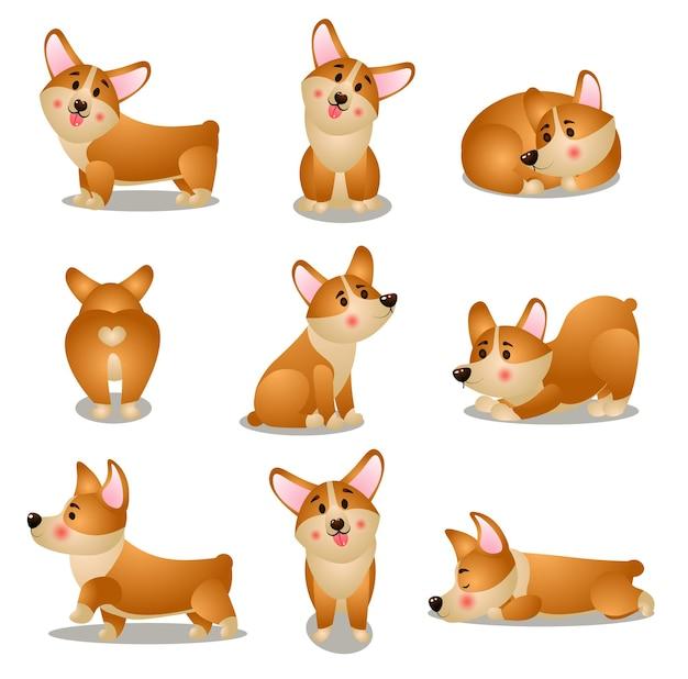Zestaw uroczych postaci psa corgi w różnych codziennych sytuacjach