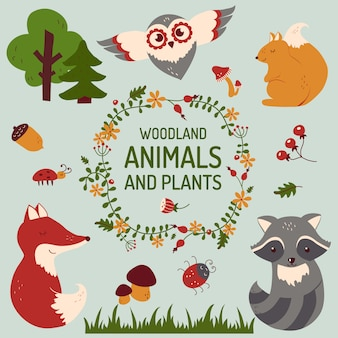 Zestaw uroczych zwierzątek. ilustracji wektorowych.