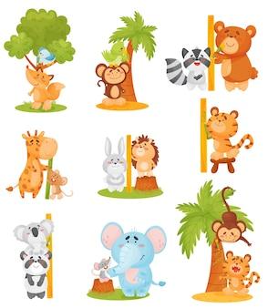 Zestaw uroczych zwierzątek mierzy wzrost w pobliżu drzewa i linijki
