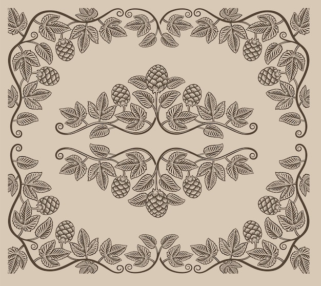 Zestaw vintage elementów gałęzi chmielu i obramowań do dekoracji lub marki alkoholu na białym tle.