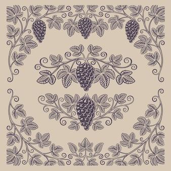 Zestaw vintage elementów gałęzi winogron i obramowań do dekoracji lub marki alkoholu na jasnym tle.
