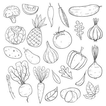 Zestaw warzyw w stylu szkicu lub ręcznie rysowane