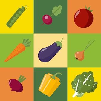 Zestaw warzyw. zdrowe jedzenie. pieprz, bakłażan, groch, cebula, rzodkiewka, pomidor, burak, marchewka, kapusta. styl płaski