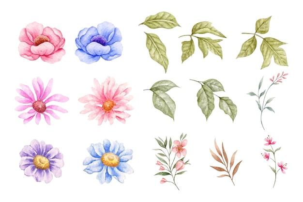 Zestaw wiosennych kwiatów i liści na białym tle