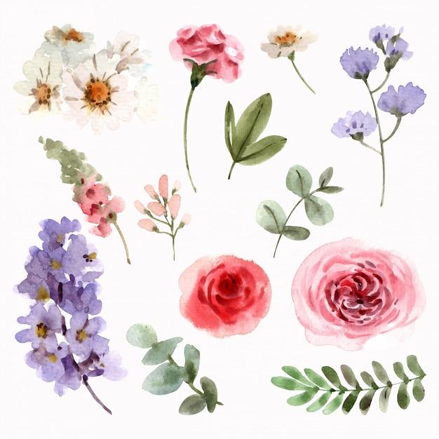 Zestaw wiosennych kwiatów