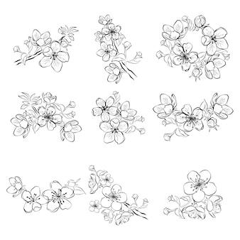 Zestaw wiśniowych kwiatów. kolekcja kwiatów sakury. czarno-biały rysunek wiosennych kwiatów.