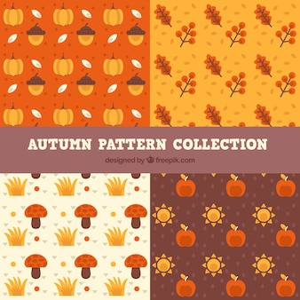 Zestaw wzorców, jesienią