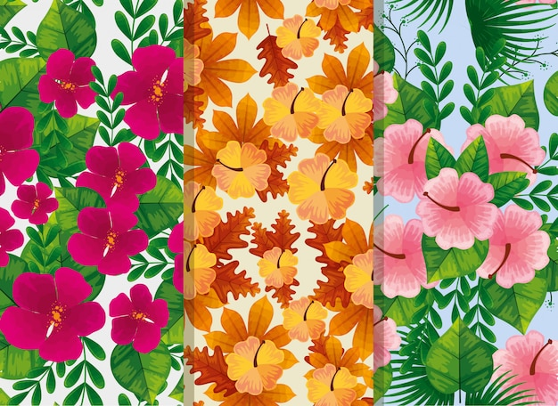Zestaw wzorów kwiatów i liści